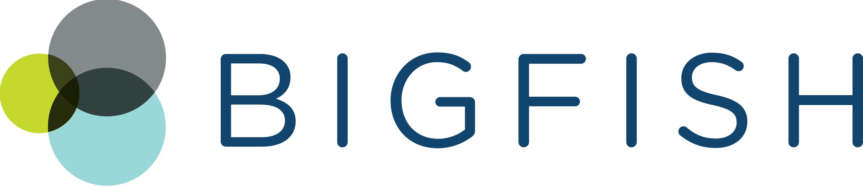 BIGfish (IntelliMetrics): business analytics